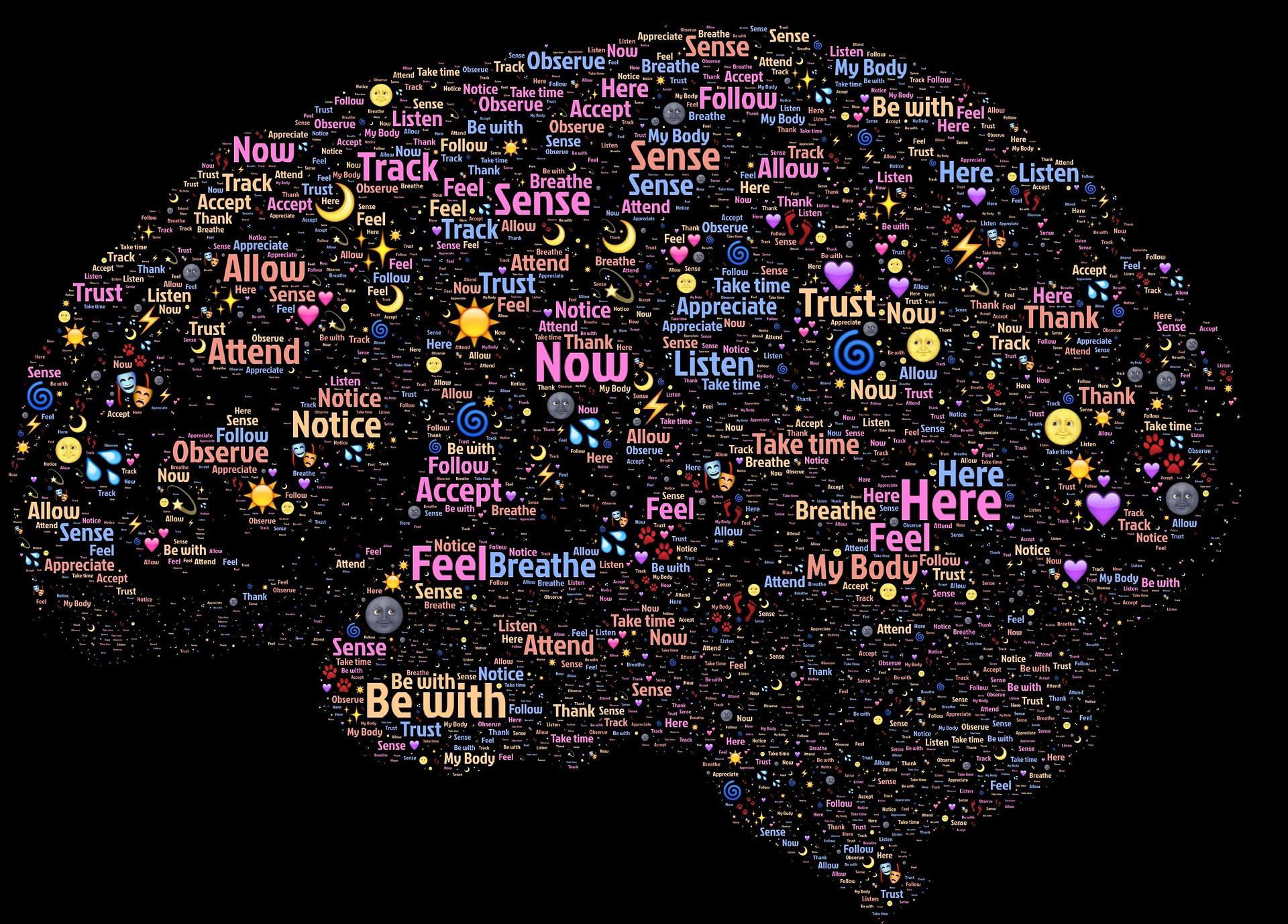 Dekart dualizam deljivost supstancije mozak