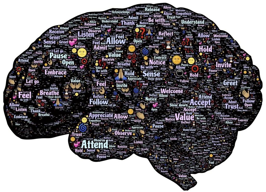 brain-744180_1920