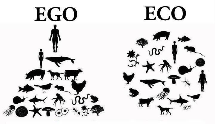 veganstvo za i protiv
