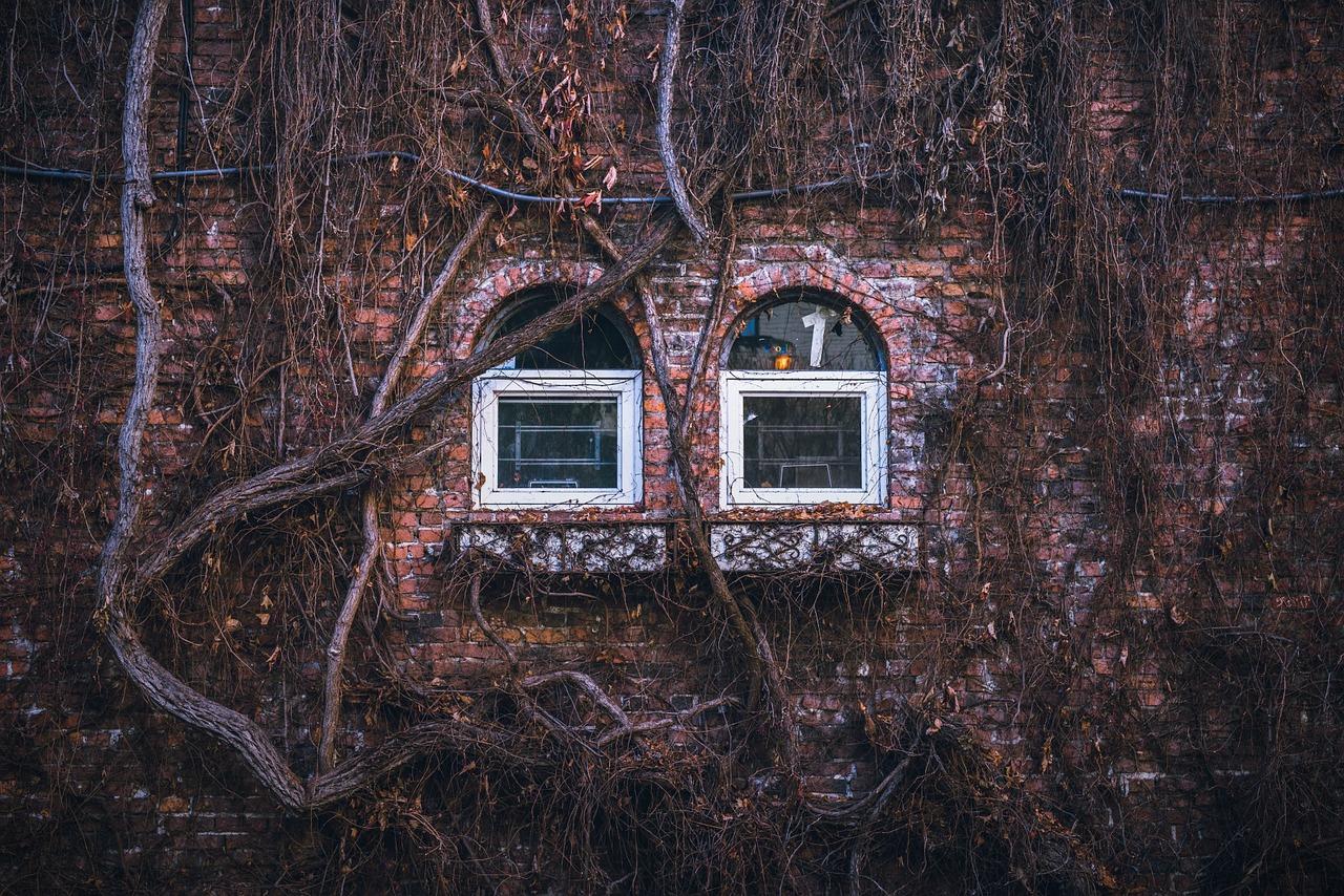 windows-1209555_1280